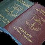 Sustitución del Pasaporte